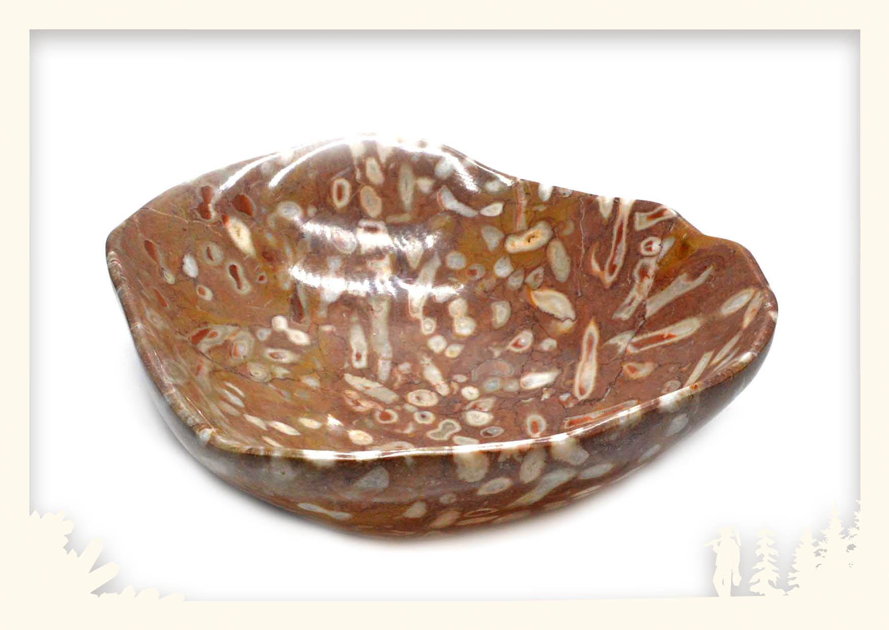 Steinschale Koralle Image